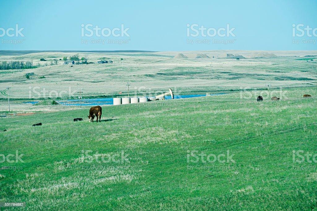 Oil pump on pasture land in northwest North Dakota stock photo