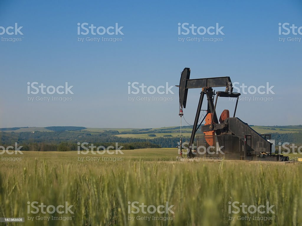 Oil Pump Pumpjack With Wheat in Foreground royalty-free stock photo