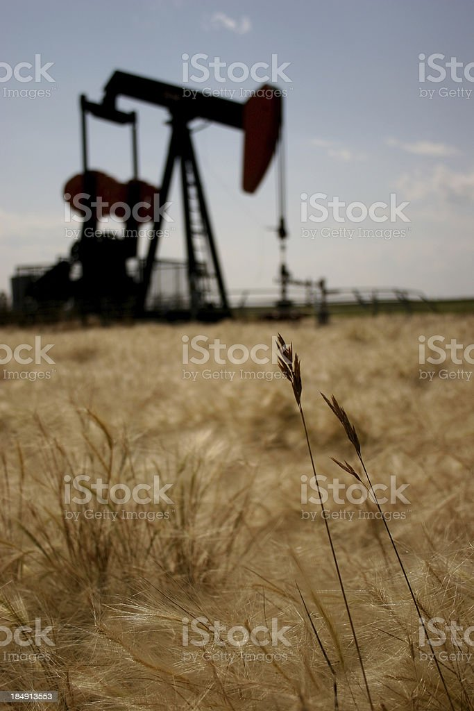Oil rig located in a field on a clear day stock photo
