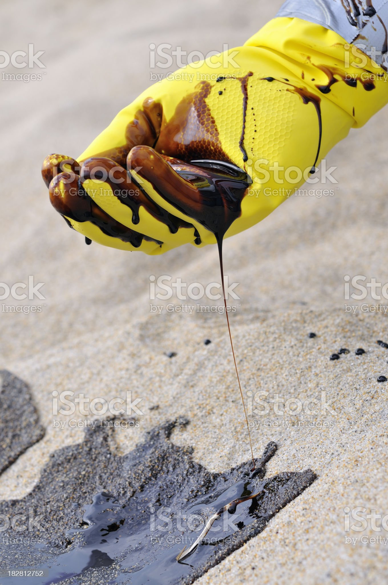Oil Spill: Gloved Hand Collects Crude from Beach royalty-free stock photo