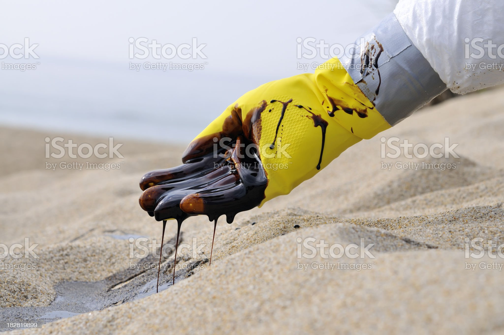 Oil Spill: Tragic royalty-free stock photo