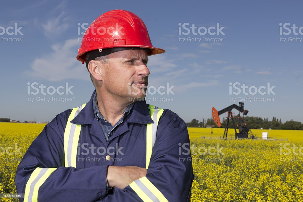 Oil Worker in Canola royalty-free stock photo