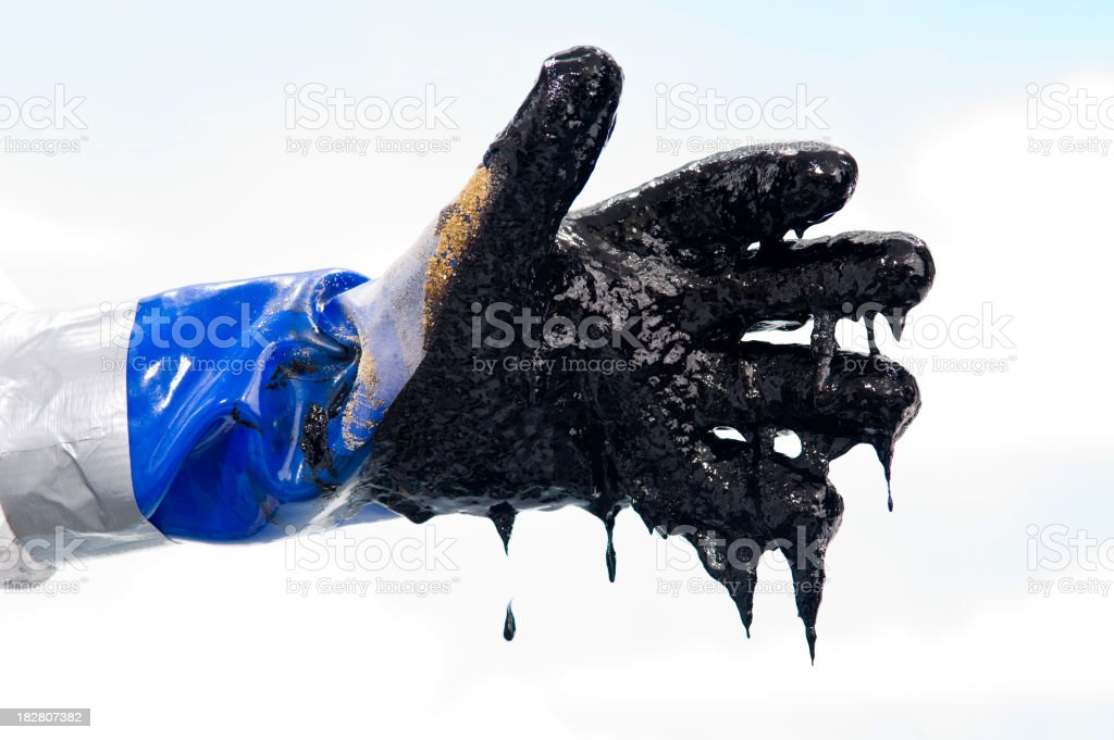 Oiled covered gloved hand during Oil spill clean up stock photo