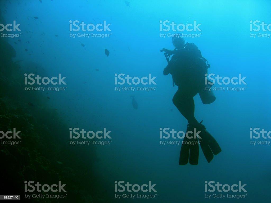 ok diver sipadan scuba silhouette stock photo