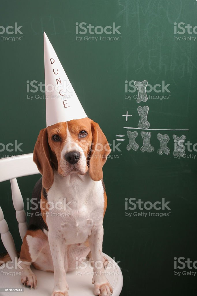 Ok, I Am Not A Mathematician royalty-free stock photo