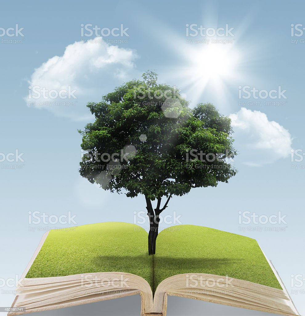 ok with tree on natural background royalty-free stock photo