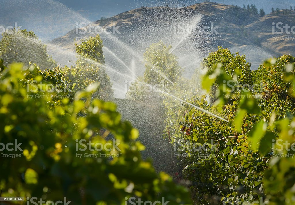 Okanagan Irrigation stock photo