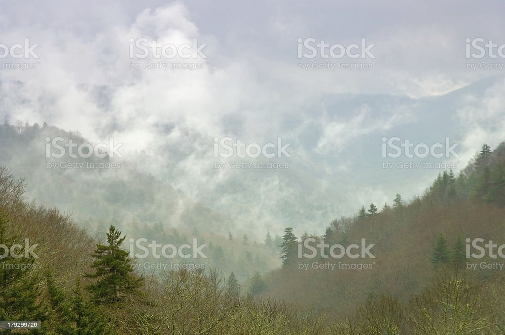okanaluftee valley with fog and mist in smoky mountains stock photo