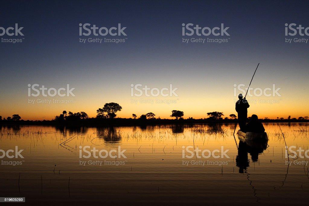 Okavango floating stock photo