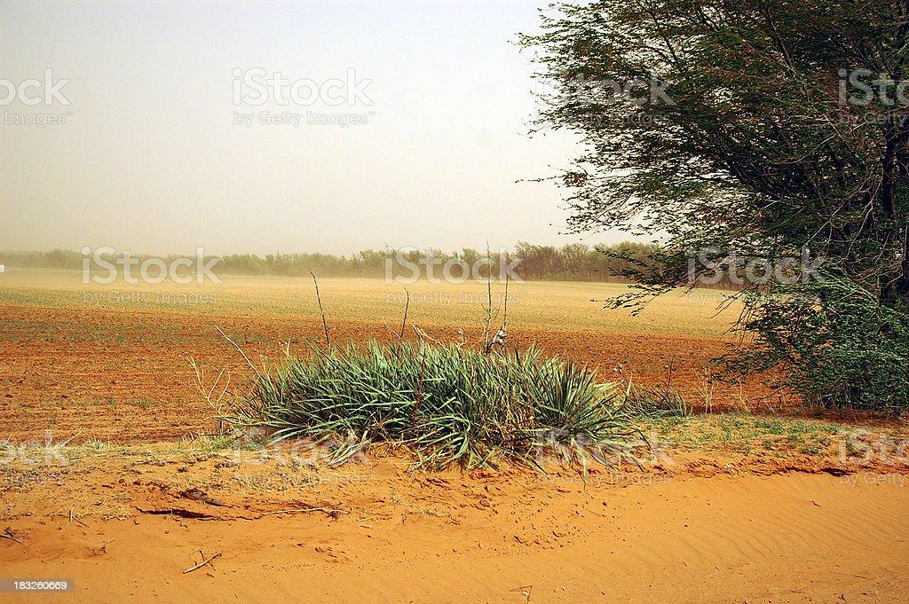 Oklahoma Dust Storm stock photo