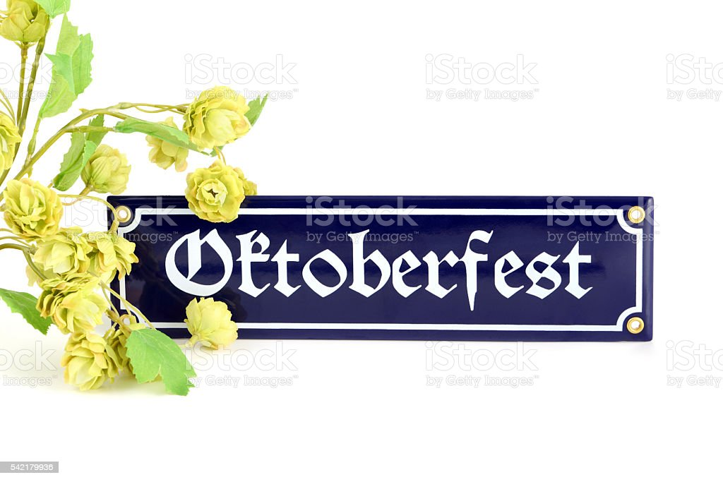 Oktoberfest information sign with hop stock photo