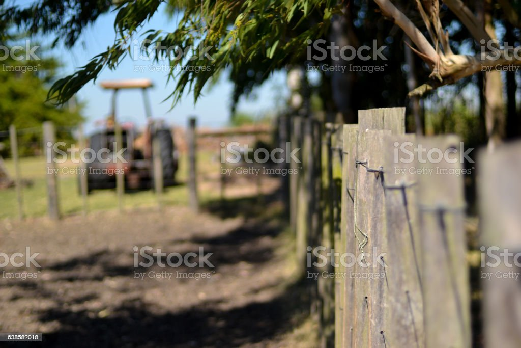 Old 290 Massey Ferguson tractor behind field wire fences stock photo