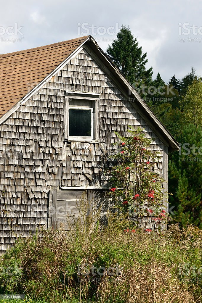 Old Abandoned Barn in a Field stock photo
