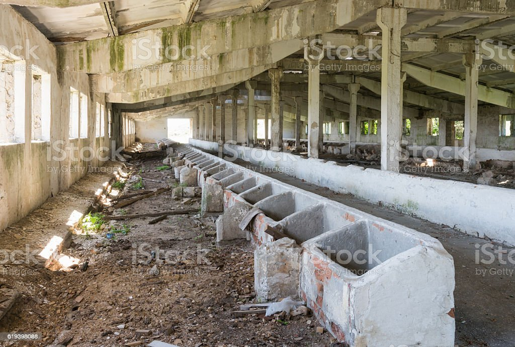 Inside Animal Barn Old Abandoned View Of The Building Stock Photo