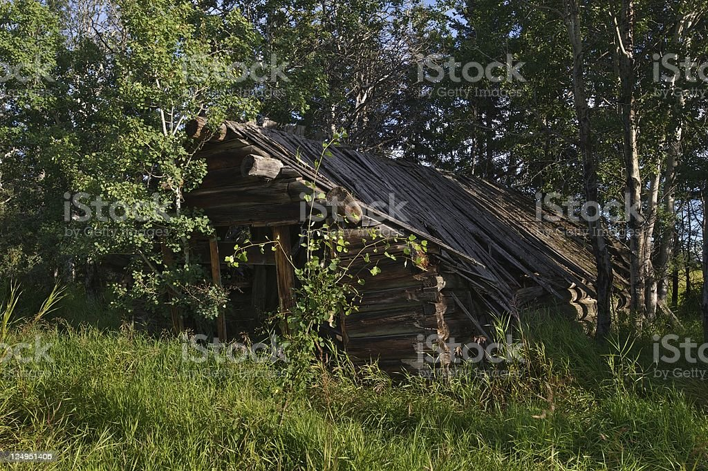 old abandoned building: collapsing log cabin royalty-free stock photo