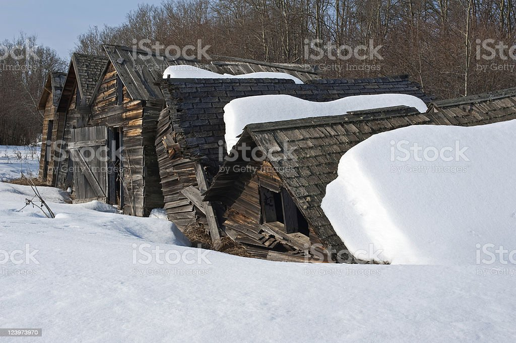 Old abandoned farm building: collapsing snowy granaries close up royalty-free stock photo