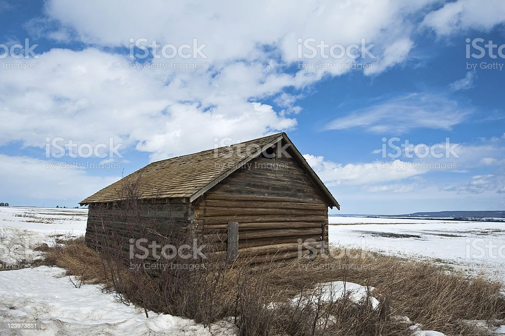 old abandoned farm building: early spring log barn stock photo