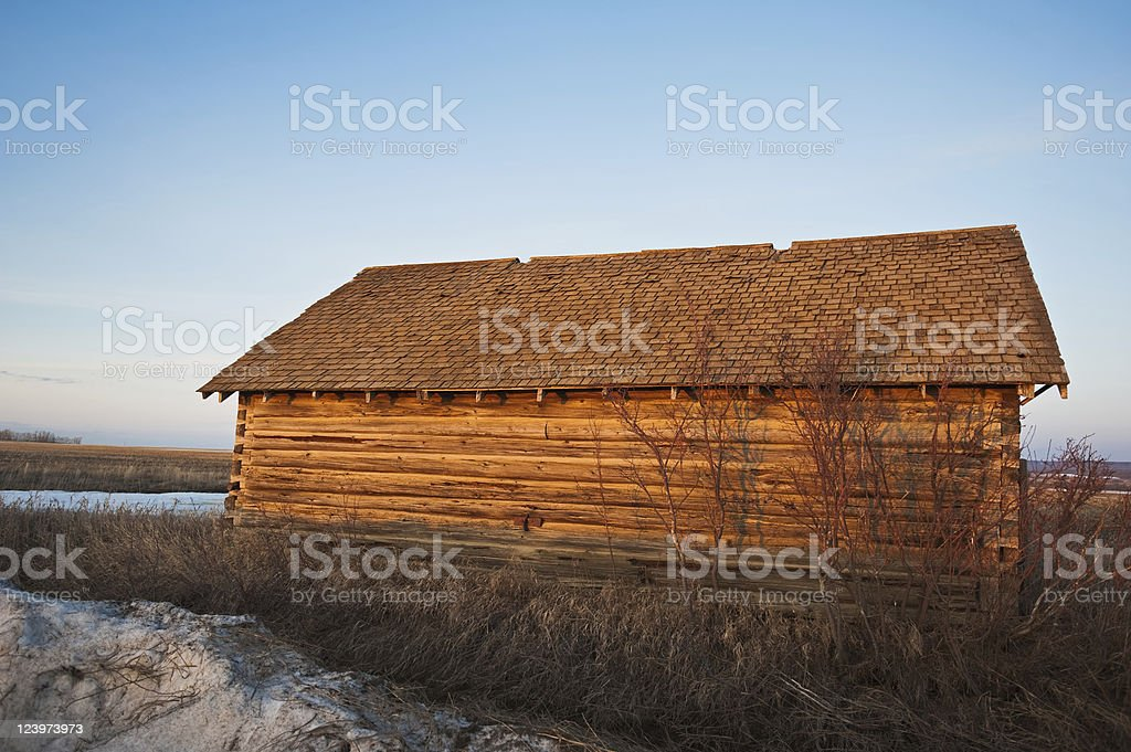 old abandoned farm building: log barn at sunset royalty-free stock photo