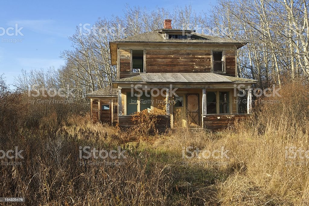 old abandoned farmhouse: decrepit house in caraganas and aspens stock photo