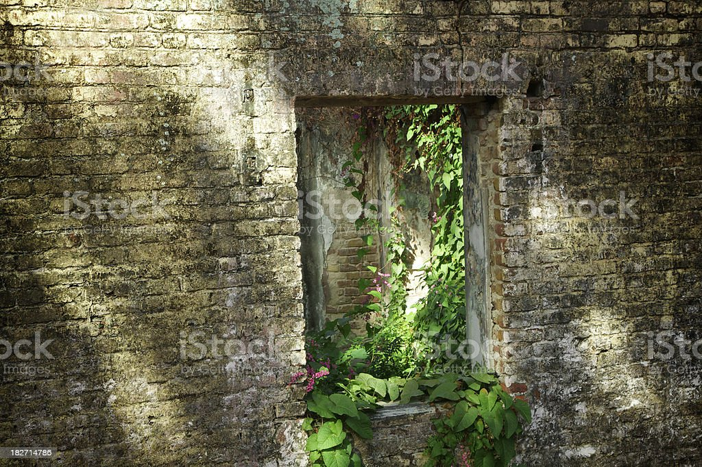 Old Abandoned Fort, Dominica, Caribbean, Grunge stock photo