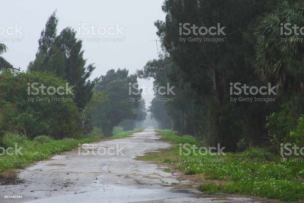 Old abandoned highway around southern shore of Lake Okeechobee stock photo