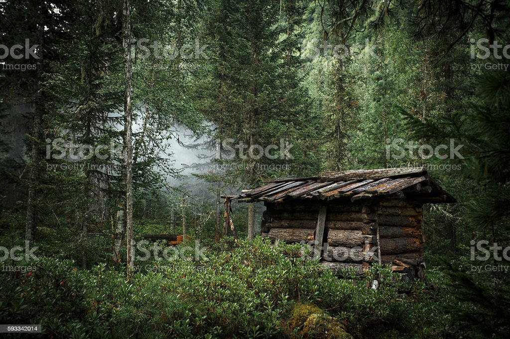 Old abandoned hunter's cabin in taiga forest royalty-free stock photo