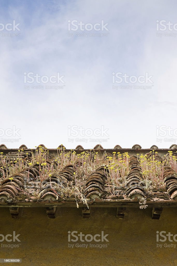 Old abandoned roof stock photo