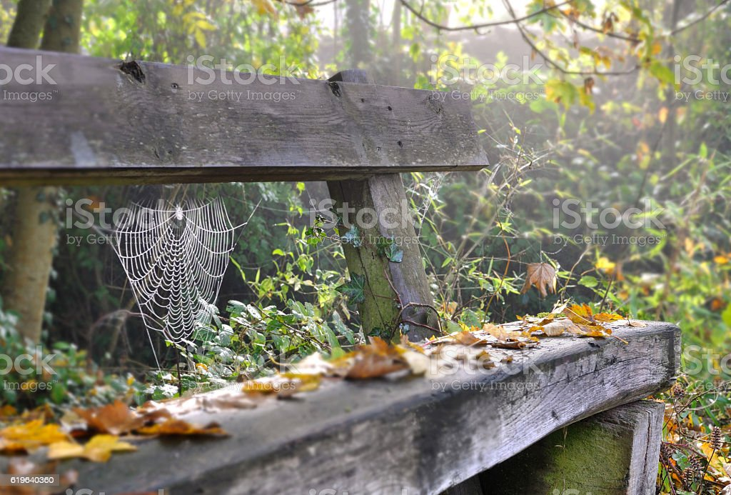 old an d rustic bench stock photo