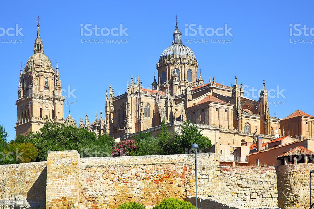 Old and New Cathedrals in Salamanca stock photo