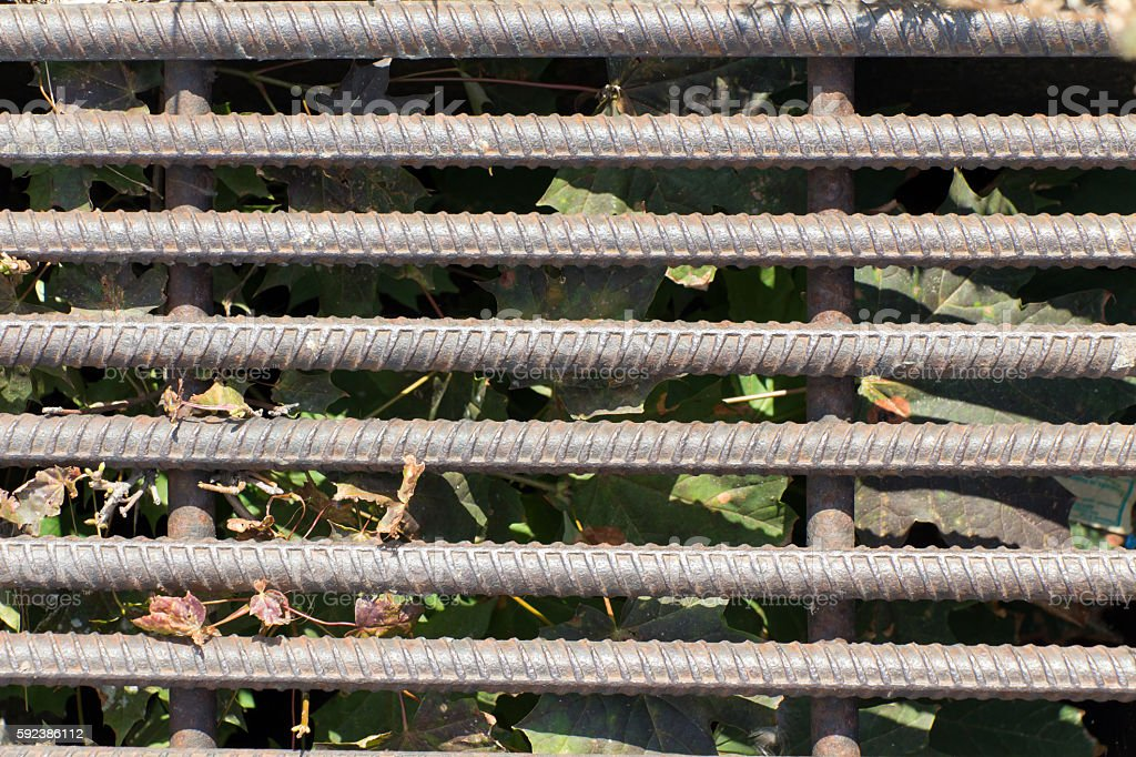 Old and rusty iron bars. In the background dried leaves stock photo