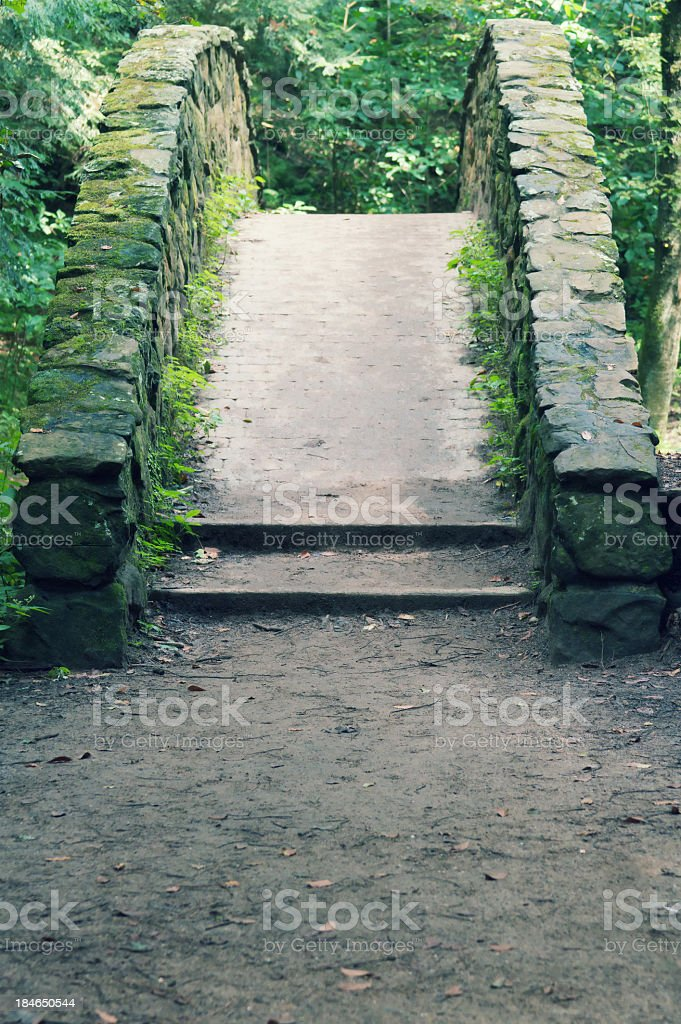 Old Arch Bridge royalty-free stock photo