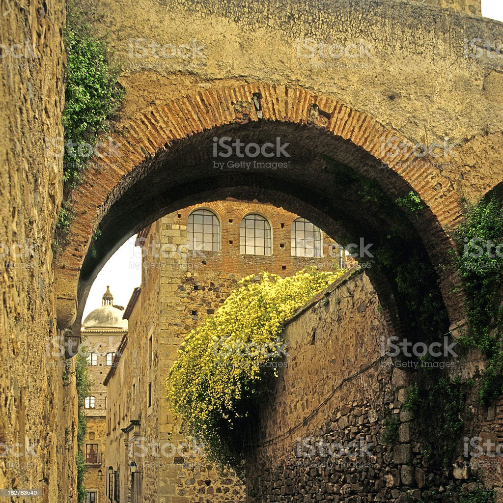 old arch stock photo