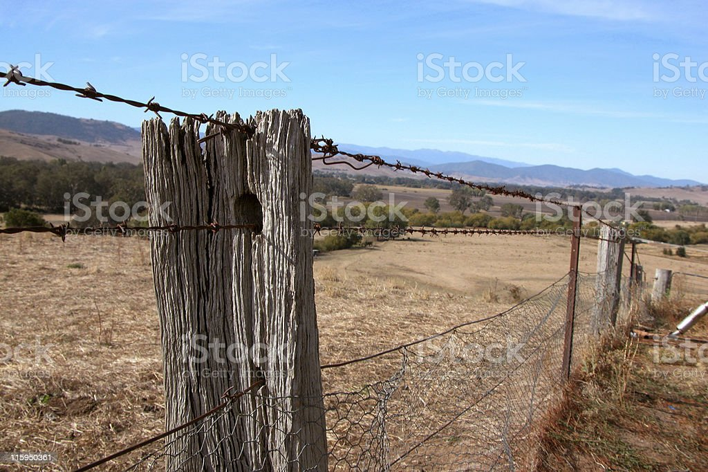 Old Australian fence with wooden post and rusty barbed wire royalty-free stock photo