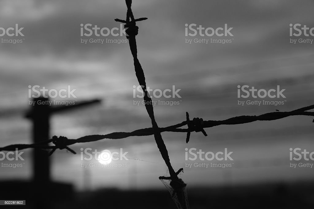 old barb-wire fence stock photo