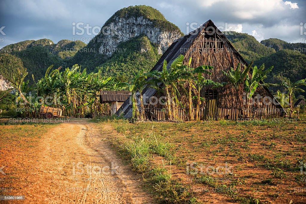 Old barn among mogotes in Valle del Silencio, Vinales Cuba stock photo