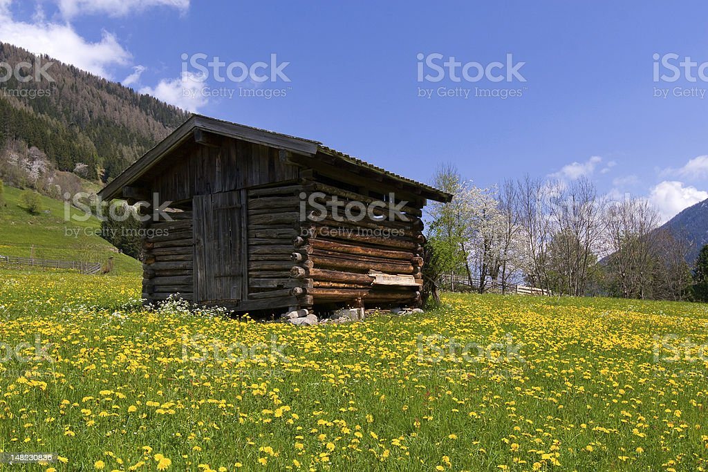 Old barn in Alps royalty-free stock photo