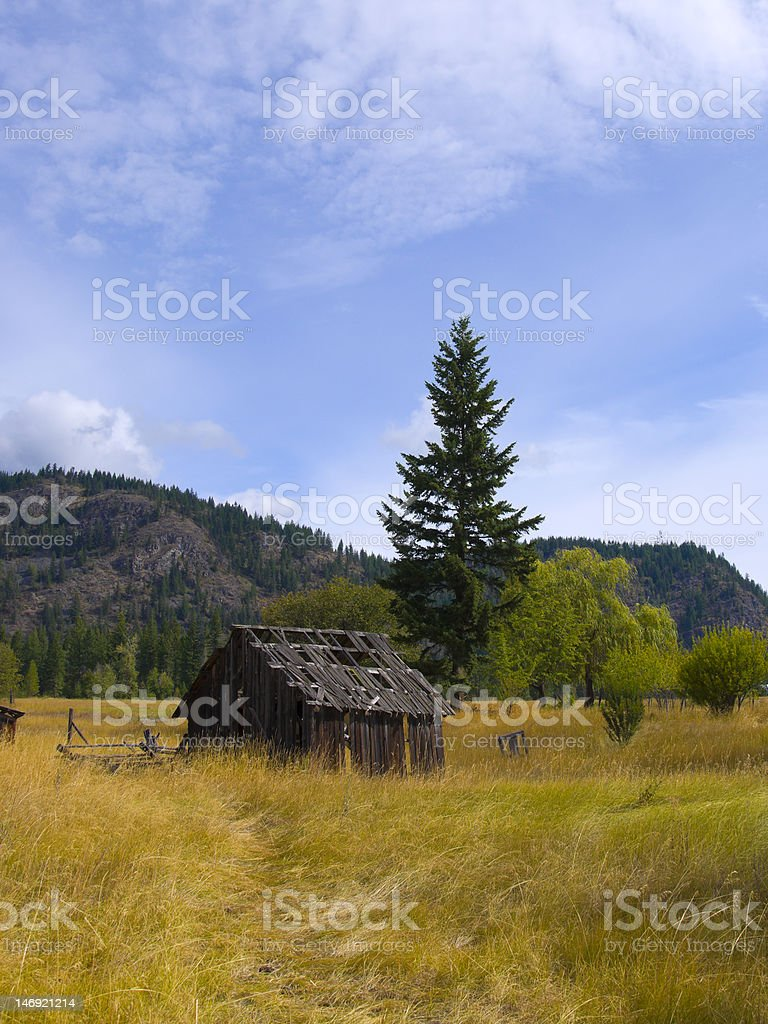 Old Barn in Golden field royalty-free stock photo