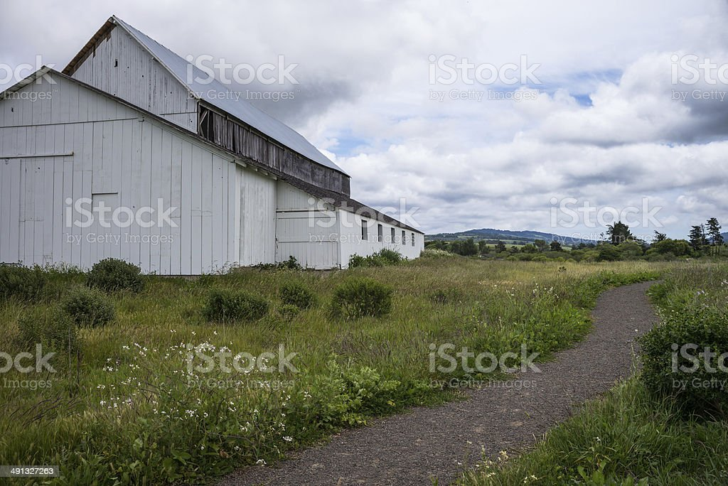 Old Barn in green grass stock photo