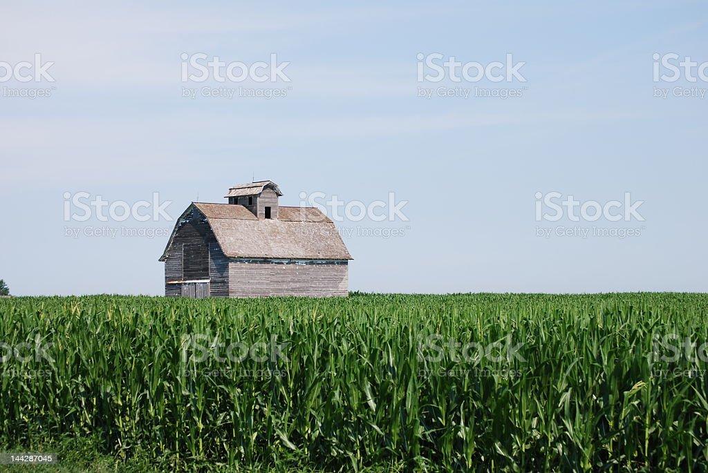 Old Barn Iowa royalty-free stock photo