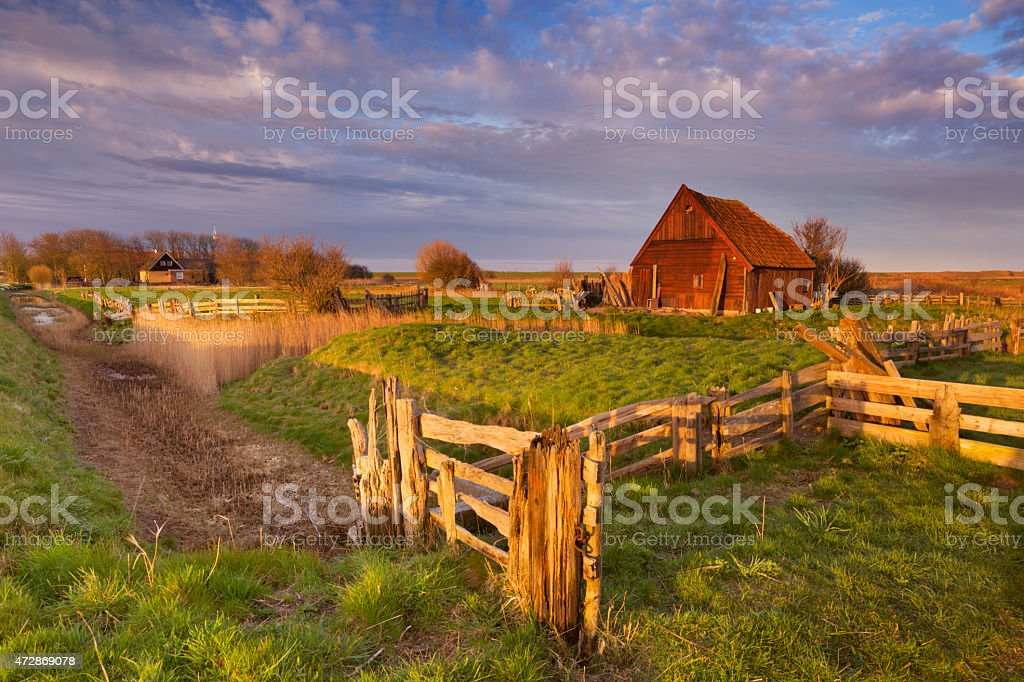 Old barn on the island of Texel, The Netherlands stock photo
