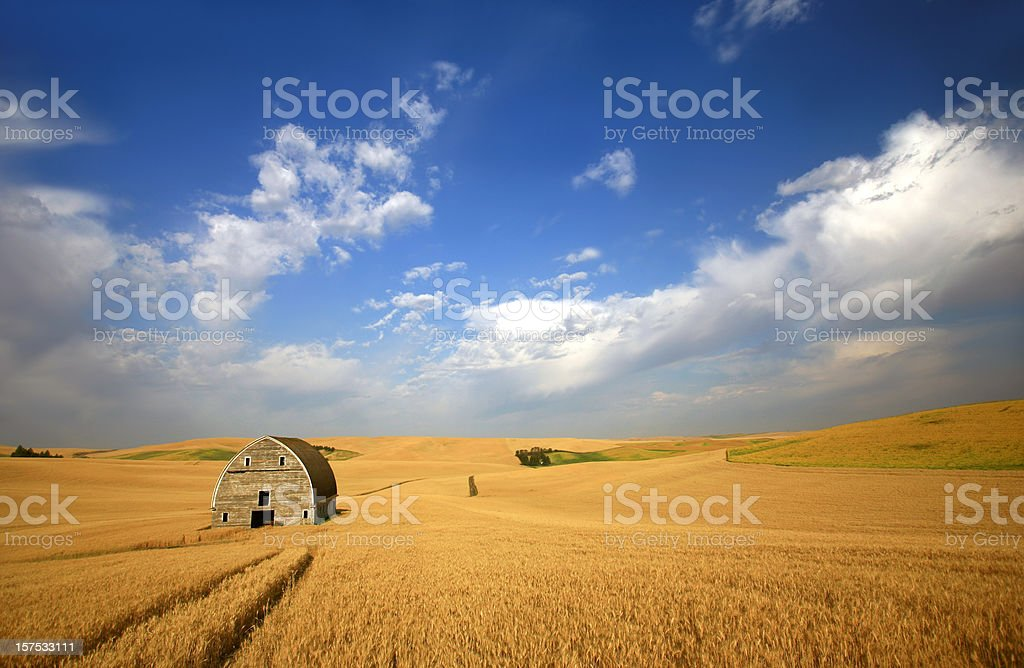 Old Barn on the Plains royalty-free stock photo