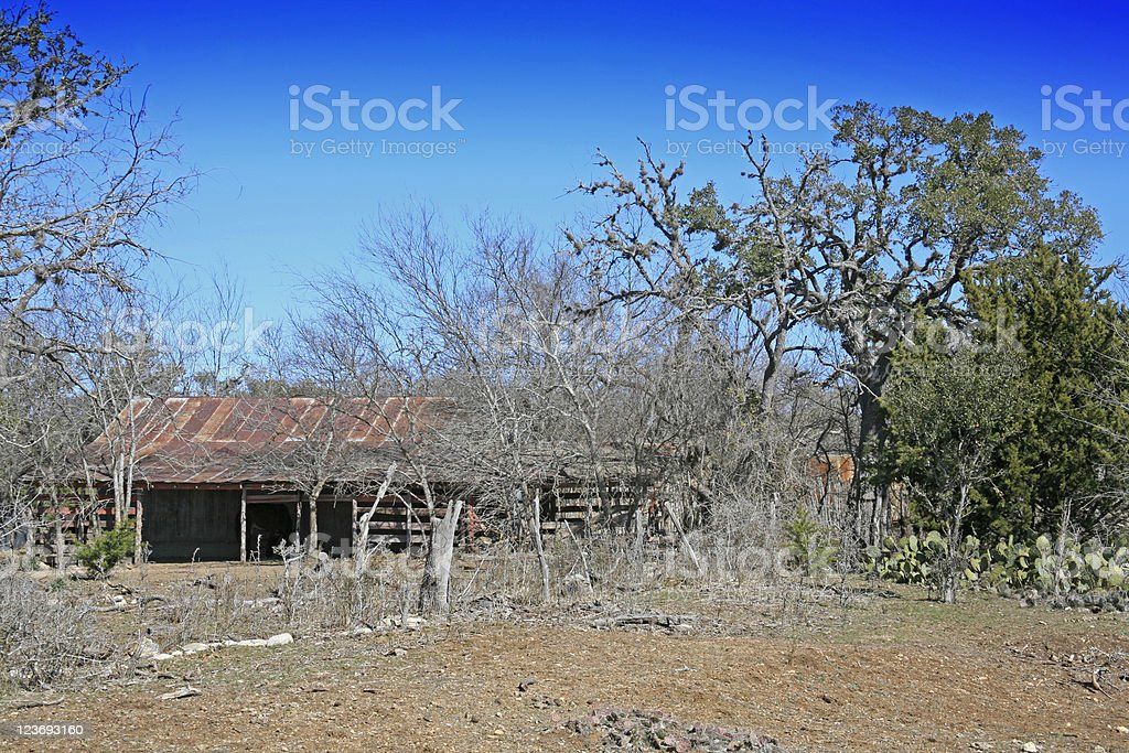Old Barn with donkey in Texas Hill Country royalty-free stock photo