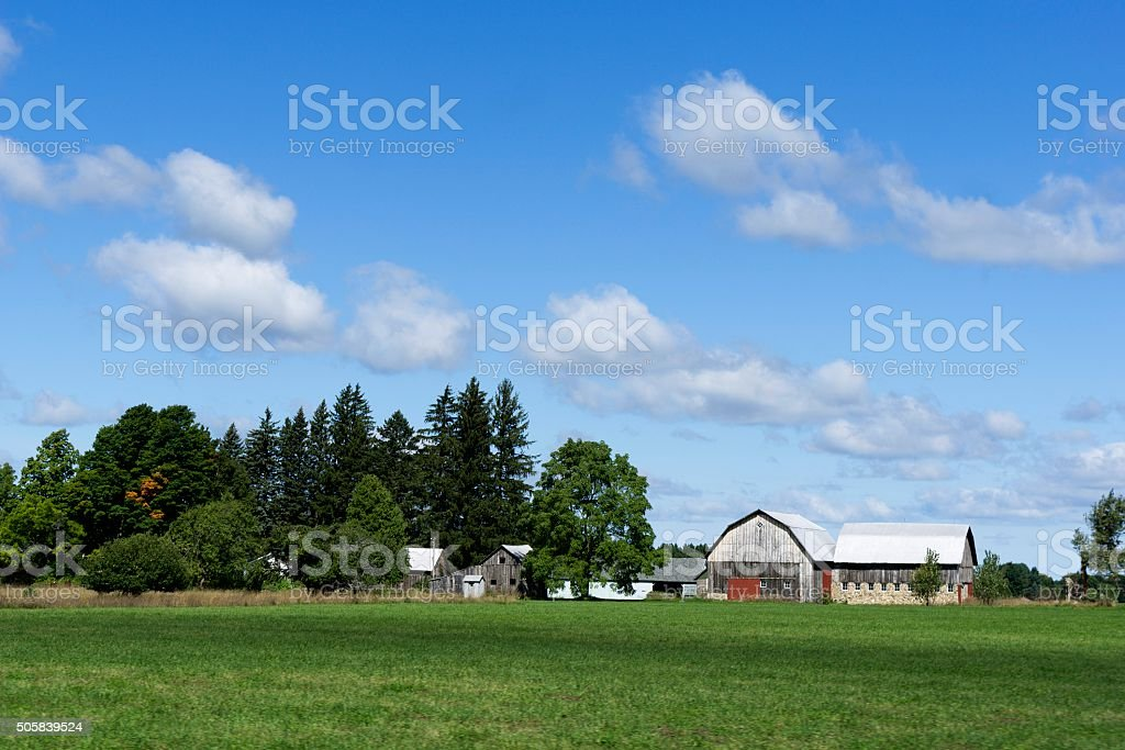 Old Barns in Northern Michigan stock photo