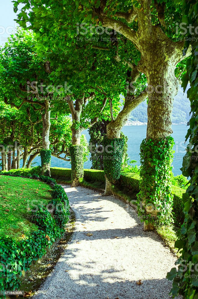 Old beautiful park, garden with bushes, trees, grass, paths, alleys royalty-free stock photo