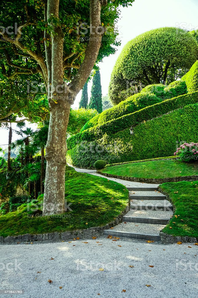 Old beautiful park, garden with bushes, trees, grass, paths, steps stock photo