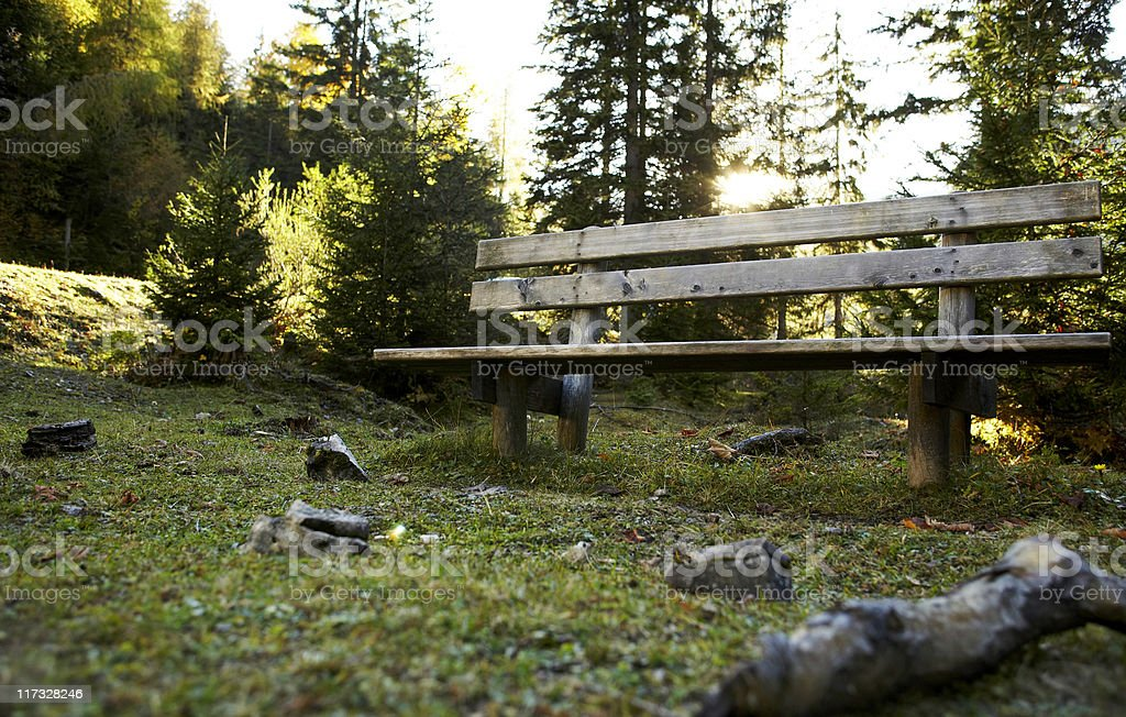Old Bench In The Forest royalty-free stock photo