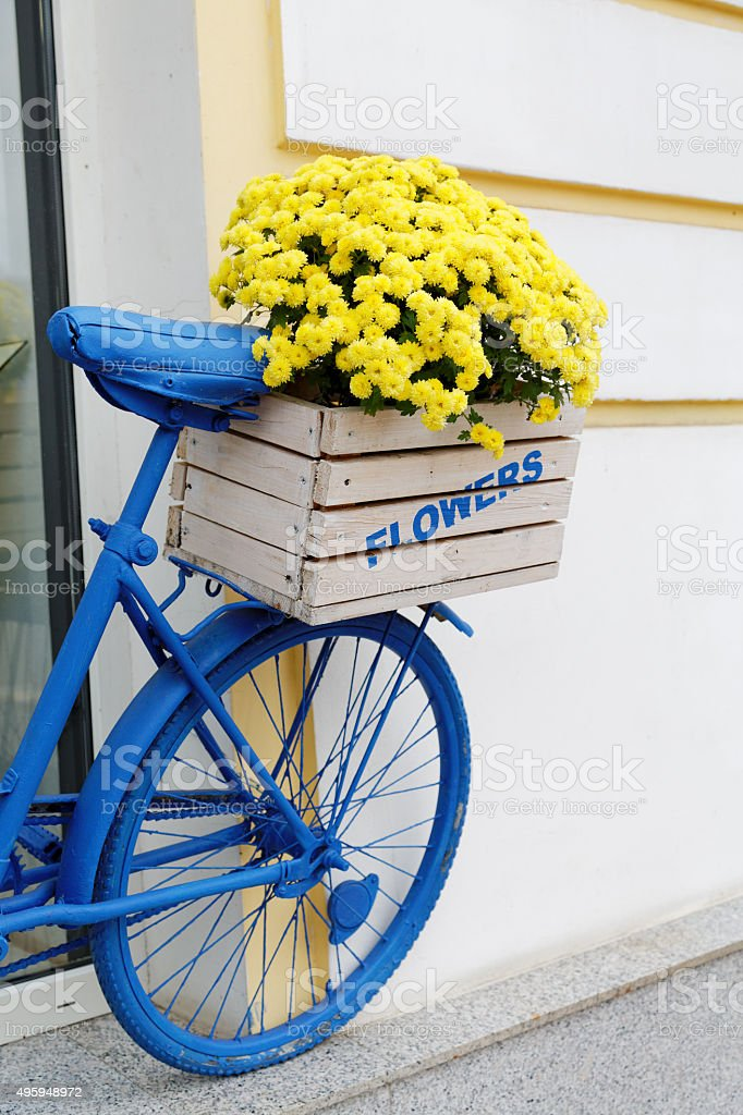 old bicycle with flowers box stock photo