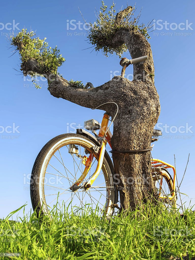 Old bike royalty-free stock photo