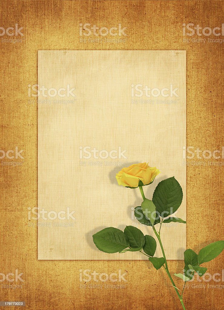 Old blank card with a single yellow rose royalty-free stock photo