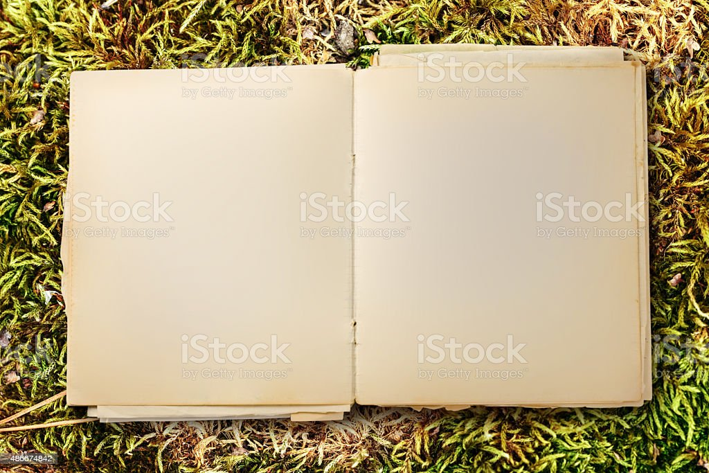 Old blank notebook open stock photo